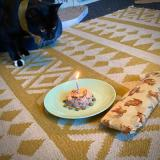 A cake made of tuna and whole small fish, surrounded by a ring of dreamies, and topped with a candle. Tootsie is being held back from eating the cake while the candle is lit.